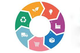 Economía circular y sostenibilidad
